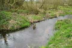 Redbournbury Fishery - Channel Narrowed To Improve Conditions For Brown Trout - John Fisher
