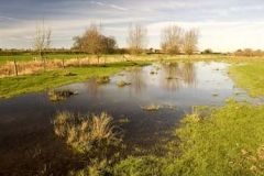 The Water Meadows Of Redbournbury - Flooded In January 2007 - John Woodworth