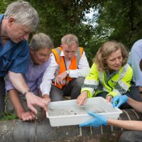 Pumping Station Switch Off Expected To Provide Valuable Boost To River Ver