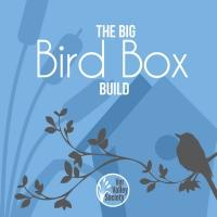 The Big Bird Box Build