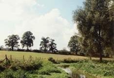 The Ver From Pre Mill - Bob Aldritt