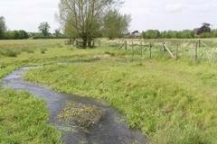 Redbournbury Water Meadows From The Irish Weir - Ernie Leahy