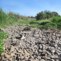 10 ways you can help the River Ver